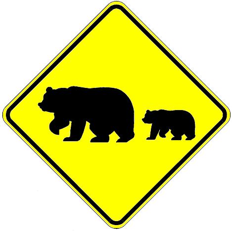 Migrating Bears