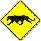 Panther Crossing